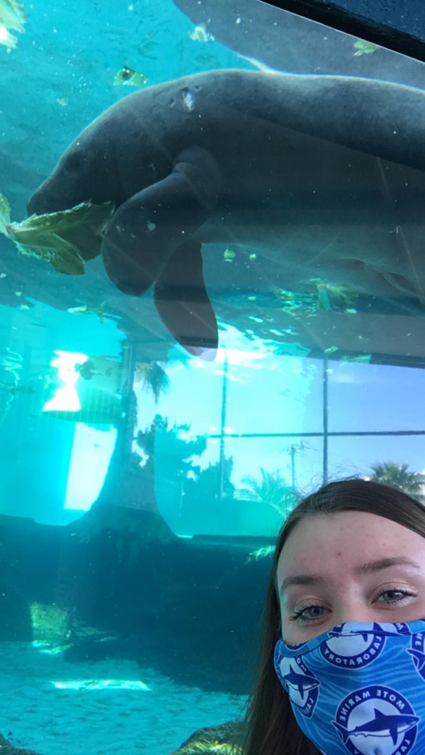Student poses with manatee